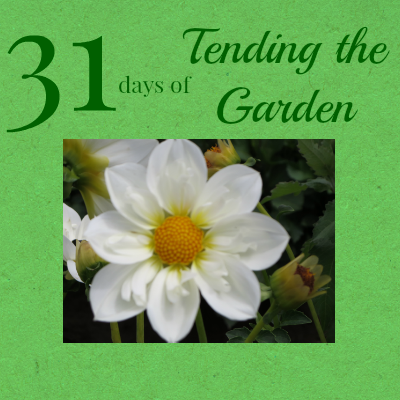 31 Days of Tending the Garden
